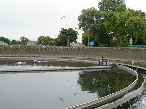 微生物による下水処理を終えた段階の場所