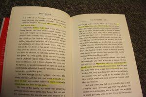 読書日記: ケリー・ブルックの伝記を読んだ
